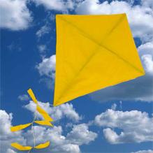kite 219x219